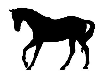 Trotting horse pretty animal vinyl decal bumper sticker car laptop phone