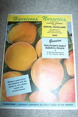 1947 Harrison's Nurseries Berlin Maryland Md Fruit Ornamentals Price Booklet