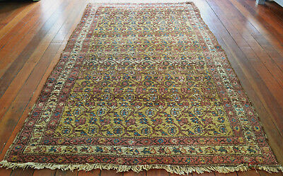 Unusual Antique Hand Knotted Hamadan Wool Pile Rug Circa 1920