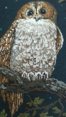"""VINTAGE FRENCH ROYAL PARIS 1984 ETS.STEINER FRERES COMPLETED TAPESTRY OWL 19x15"""""""