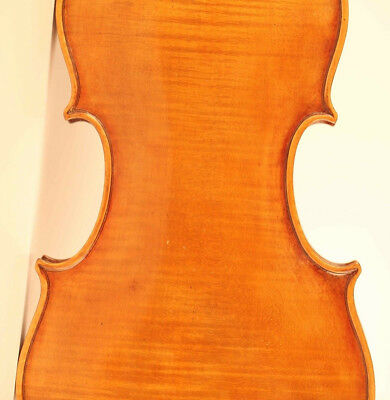 alte geige labeled Antoniazzi 1910 violon old violin cello viola 小提琴 ヴァイオリン