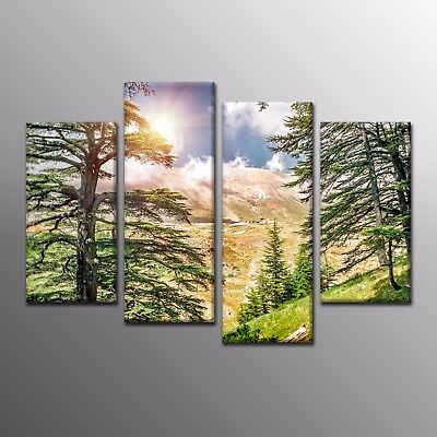 Landscape Large Canvas Poster Wall Art Print Decor Pine Forest Tree Photo-4pcs