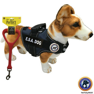 "ESA DOG PKG - Vest + Perfect Leash the ""Walkabout"" by LuvDoggy"