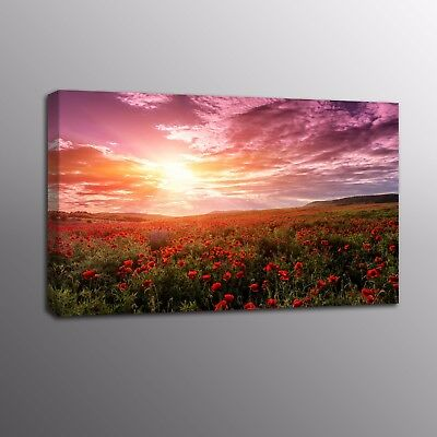 Modern HD Canvas Print Art Red Poppy Flowers Painting Wall Canvas Art Home Decor