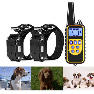 2Pcs 800m Dog Training Collar+1 Remote Control Electric Rechargeable Waterproof
