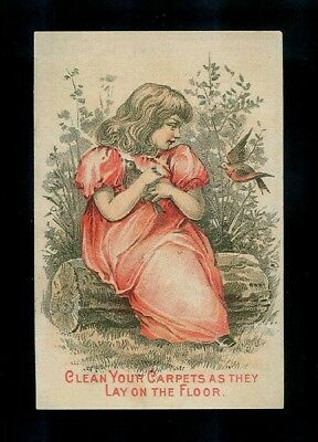 Girl In Red Dress & Friendly Robins-1880s Victorian Trade Card