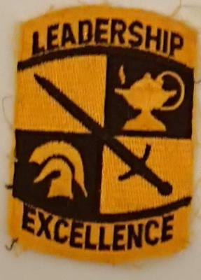 Cloth Patch - Army Leadership/Excellence Sleeve Patch 9 x 60cm New