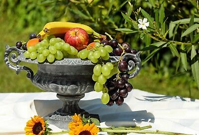 Fruit Bowl Home Kitchen Cafe Canvas Picture Poster Print Wall Art Unframed #1249