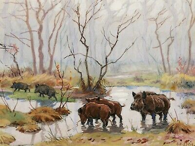 Georges Frédéric RÖTIG watercolour drawing oil painting wild boar chasse forest