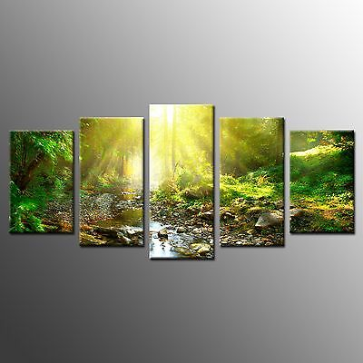 FRAMED Large Wall Art Tree Painting Stretched Sunlight Canvas Print Art-5pcs