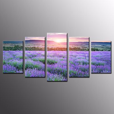 FRAMED Wall Art Home Room Decor Stretched Giclee Purple Flower Canvas Print-5pcs