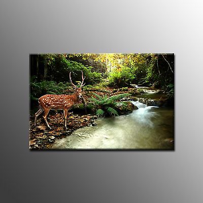 FRAMED HD Canvas Print Painting Deer Picture Modern Wall Art For Home Decoraion