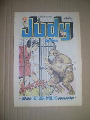 Judy issue 1037 dated November 24 1979