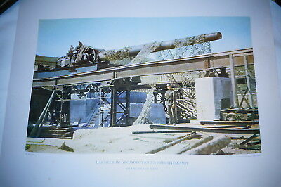 WW2 German Original Colour Press Release PR Print 19