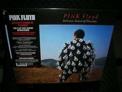 Pink Floyd Delicate Sound Of Thunder (Live) 180gm Vinyl 2 LP +g/f NEW sealed