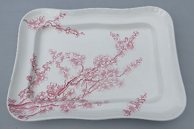 Antique/Victorian/Aesthetic George Jones Peach Blow Platter - Pink Transfer Ware