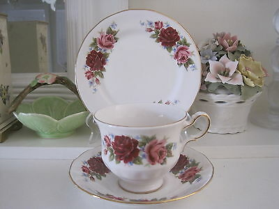 Beautiful Vintage Queen Anne Fine Bone China Trio #4