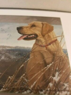 Michael Sieve - Great Bird Dogs / Hunting - Yellow Lab -  Cup / Drink Coaster -