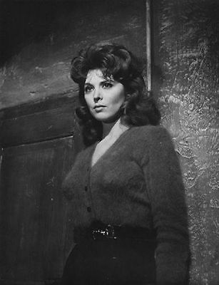GLOSSY PHOTO PICTURE 8x10 Tina Louise beautiful Long Hair With Curls