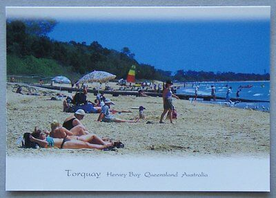 Torquay Hervey Bay Qld MV Postcard (P224)