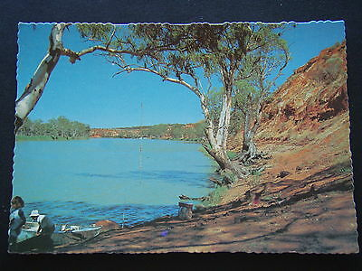 Riverland Sa River Gums And Cliffs River Murray Mv W18 Postcard