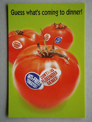 I want all GE foods labelled ACF Avant Card #4538 Postcard (P190)