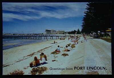 Greetings from Port Lincoln SA Town Jetty c1970's Postcard (P240)