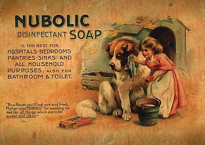 c.1800's ''NUBOLIC DISINFECTANT' MEDICAL HOUSEHOLD DOG ADVERTISING A3 PRINT