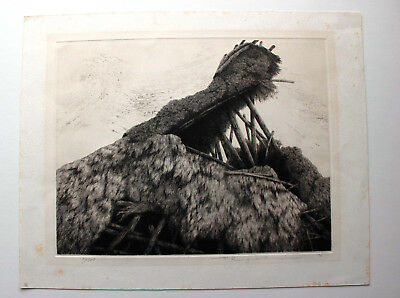 TANAKA RYHOEI Wind Japanese etching early large  1976   $1 START