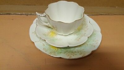 Foley Wileman Shelley Porcelain Trio Antique C1900 Cup Saucer Plate Floral