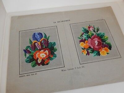 Antico Schema Ricamo  Embroidery Sajou  Berlin Woolwork Hand Painted 1854