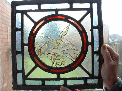 Antique Victorian Edwardian Stained Glass Window Pane Butterfly & Leaf