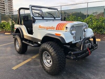 1980 Jeep CJ Roadster 1980 CJ5 -- Perfect toy! Great condition -- this ride will turn heads!!