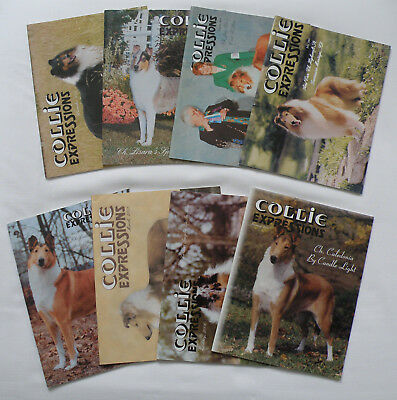 Lot Of 8 Collie Expressions Magazines, 2001