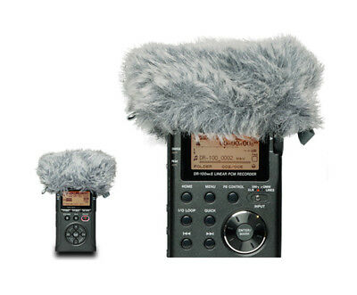 tascam DR-05 Version 2: Rekorder Stereo tragbar+ WS-11: Filter winddicht