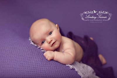 ROSES & RUFFLES PURPLE FABRIC Newborn Photography Fabric Backdrops 2 yards