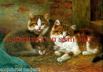 Antique Art~W.Schwar~3 Kitten Kittens Cat Cats in Barn~ NEW Large Note Cards