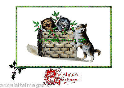 Antique Art Nouveau~Cute Singing Cats in Basket~Holly~NEW Christmas Note Cards