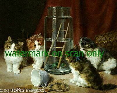 Antique Art~Kitten Kittens Cat Cats Watch Frogs in Jar Cats~NEW LgeNote Cards