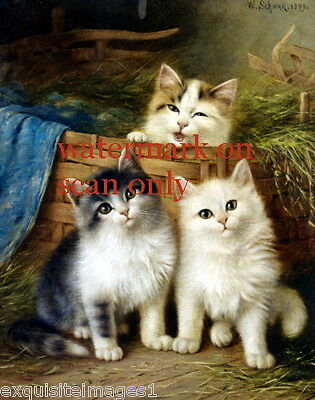 1899 W.Schwar~3 Sweet Kitten Kittens Cat Cats in Basket~NEW Large Note Cards