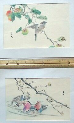 "Lot of 2, 5""x 7"" watercolor bird paintings or prints, Purchased in Orient"