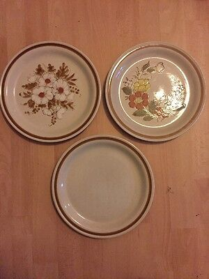 Mountain Wood Collection Stoneware Dried Flowers Trellis Blossom Vanilla Spice