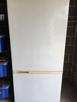 Fisher & Paykel Large 509L Fridge Freezer