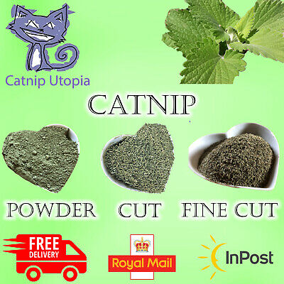 Catnip, Loose Catnip All Sizes