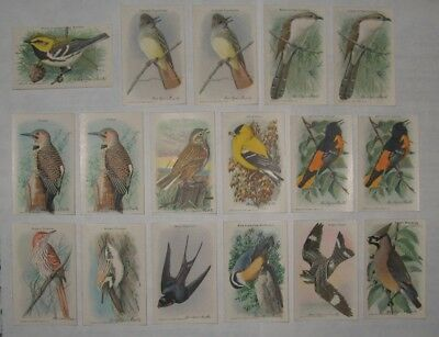 Useful Birds of America Tenth Series Arm and Hammer Baking Soda Cards Lot of 17