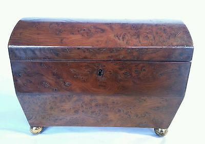 George lll Twin compartment Domed Top Tea Caddy in Burr Yew wood . Circa 1820's