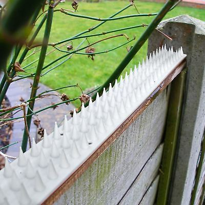 10 x Anti Climb Cat Bird Repellent Deterrent Fence Wall Spikes Security Spikes