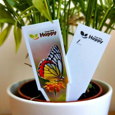 PLASTIC PLANT LABELS - 4 inches -  Pot Labels - Plant tags -  Seed labels
