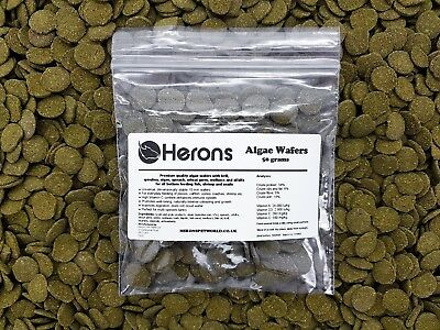 HERONS Premium Algae Wafers [50g] TROPICAL FISH Pleco Catfish Shrimp Snail