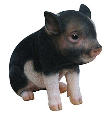 Sitting Baby PIG DARK BROWN  - Life Like Figurine Statue Home / Garden NEW